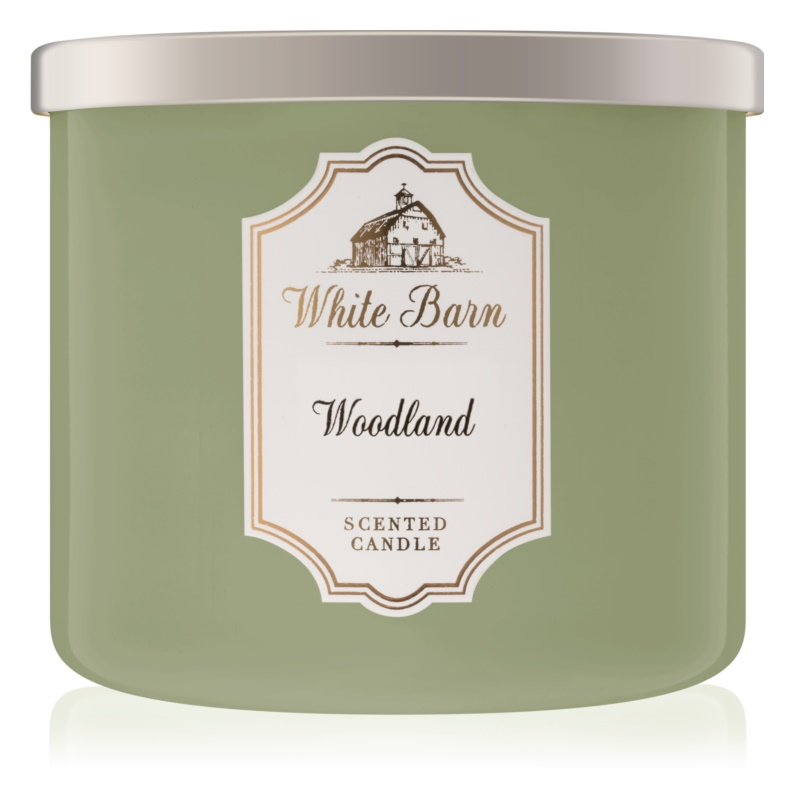 Bath & Body Works Woodland bougie parfumée 411 g