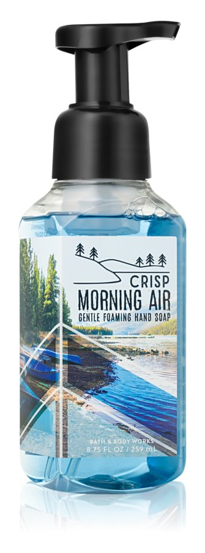 Bath & Body Works Crisp Morning Air Sapun spuma pentru maini