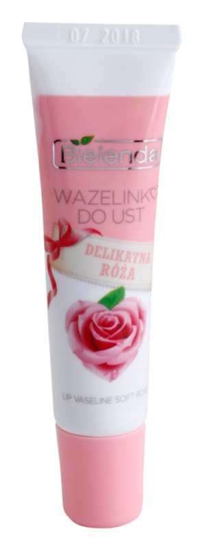 Bielenda Delicate Rose vazelin za usne