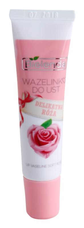 Bielenda Delicate Rose vazelína na rty