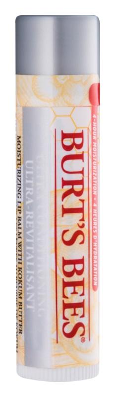 Burt's Bees Lip Care balzám pro suché rty