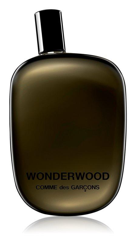 Comme des Garçons Wonderwood Eau de Parfum para homens 100 ml
