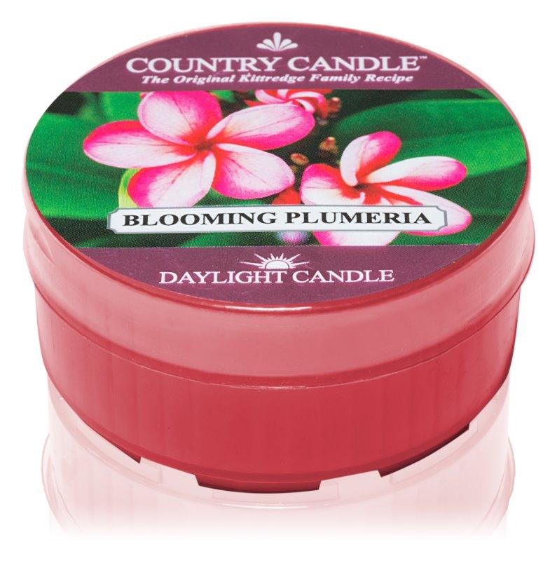 Country Candle Blooming Plumeria čajová svíčka 35 g