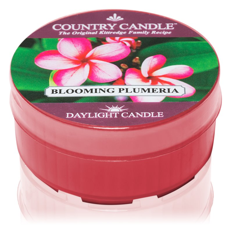 Country Candle Blooming Plumeria Theelichtje  35 gr