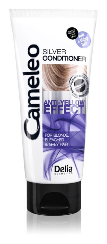Delia Cosmetics Cameleo Silver acondicionador para cabello rubio y canoso neutralizante para tonos amarillos