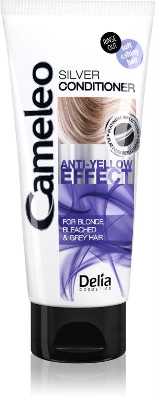 Delia Cosmetics Cameleo Silver balzam za blond in sive lase za nevtralizacijo rumenih odtenkov