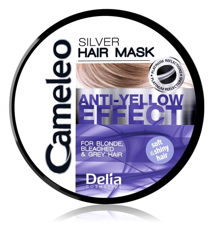 Delia Cosmetics Cameleo Silver Haarmasker  neutraliseert gele Tinten