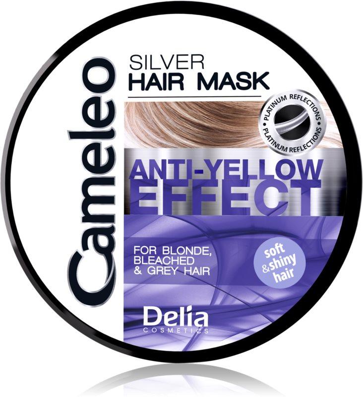 Delia Cosmetics Cameleo Silver máscara para cabelo neutraliza tons amarelados