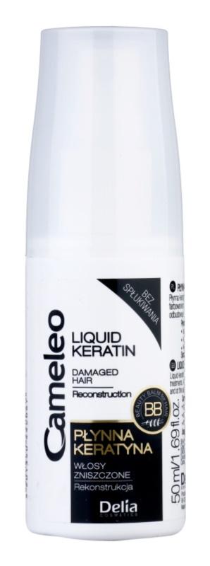 Delia Cosmetics Cameleo BB keratina líquida em spray para cabelo danificado