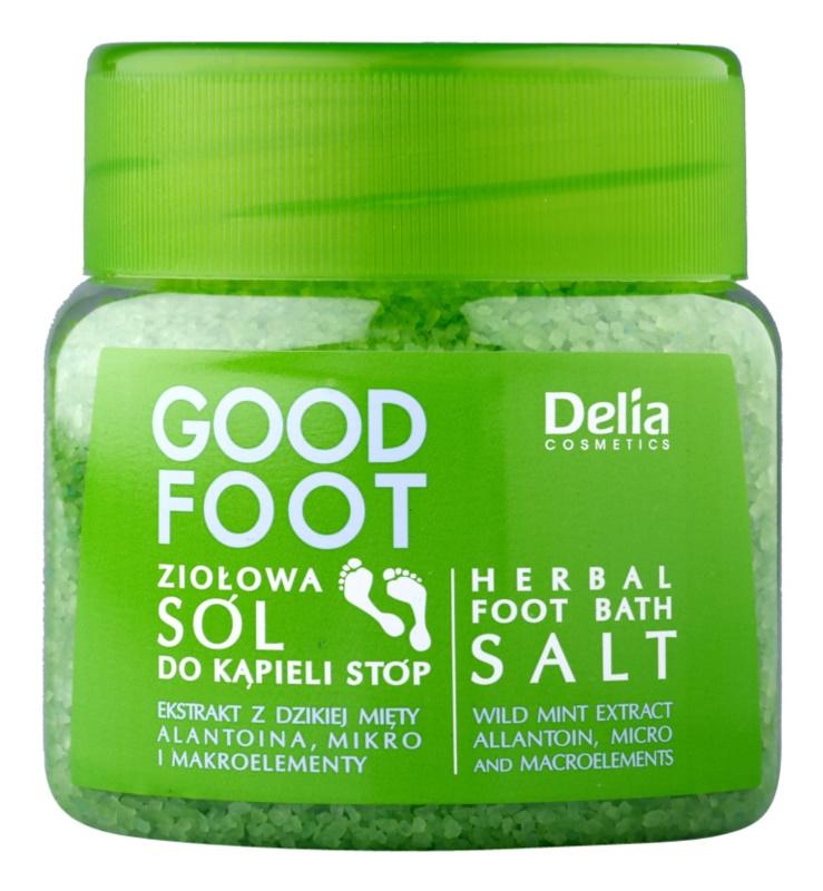 Delia Cosmetics Good Foot sel de bain aux herbes pieds