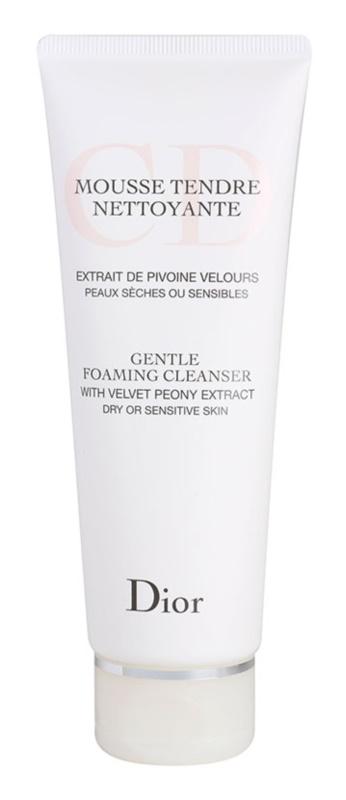 Dior Cleansers & Toners čisticí pěnivý gel pro suchou pleť
