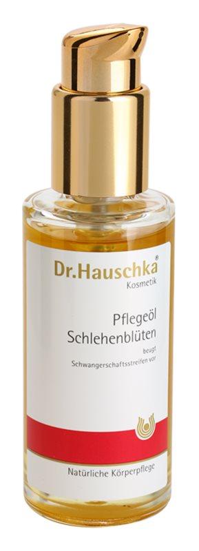 Dr. Hauschka Body Care telový olej z trnky