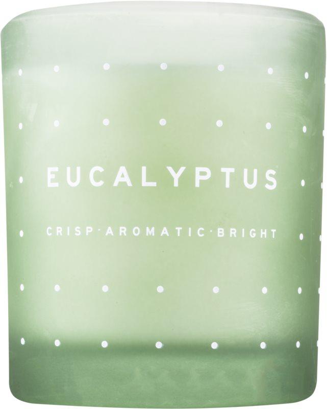 DW Home Eucalyptus bougie parfumée 371,3 g