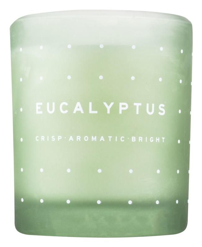DW Home Eucalyptus vonná svíčka 371,3 g