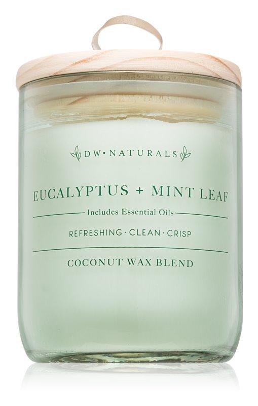 DW Home Eucalyptus + Mint Leaf vonná sviečka 500,94 g