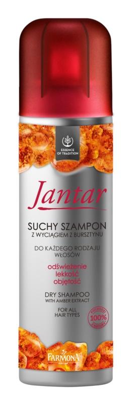 Farmona Jantar suchý šampon