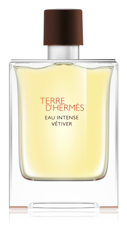 Hermès Terre d'Hermès Eau Intense Vétiver Eau de Parfum for Men 100 ml