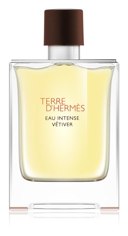 Hermès Terre d'Hermès Eau Intense Vétiver parfumovaná voda pre mužov 100 ml