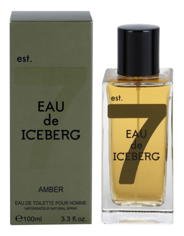 Iceberg Eau de Iceberg Amber toaletna voda za moške 100 ml