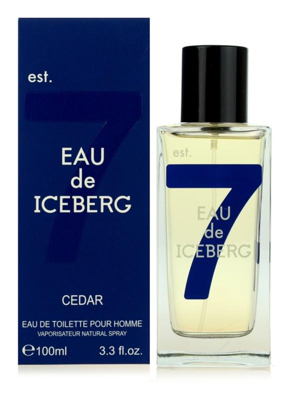 Iceberg Eau de Iceberg Cedar eau de toilette pentru barbati 100 ml