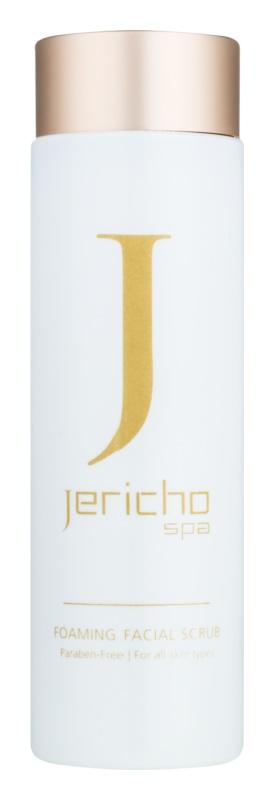 Jericho Face Care mousse nettoyante