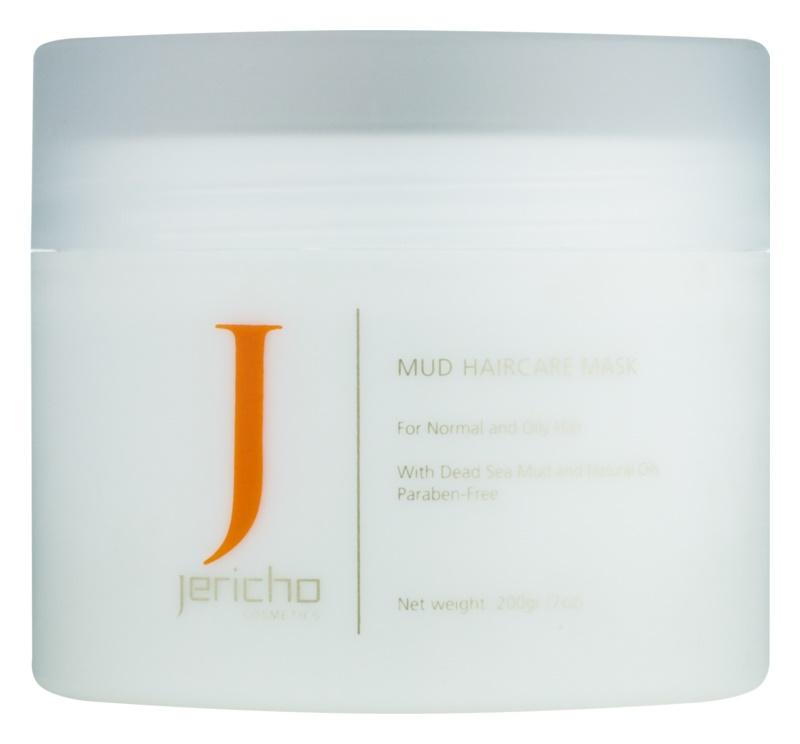 Jericho Hair Care Schlammmaske für das Haar für fettige und irritierte Kopfhaut