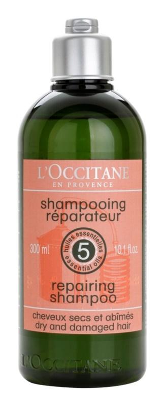 L'Occitane Hair Care regeneracijski šampon za suhe in poškodovane lase