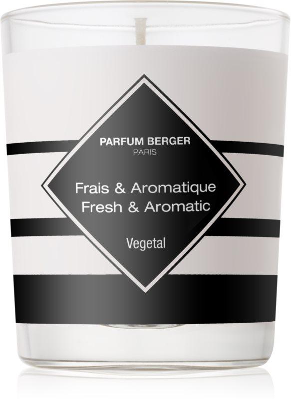 Maison Berger Paris Anti Odour Tobacco vonná svíčka 180 g II. (Fresh and Aromatic)