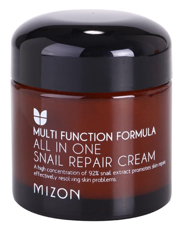 Mizon Multi Function Formula regenerační krém s filtrátem hlemýždího sekretu 92%