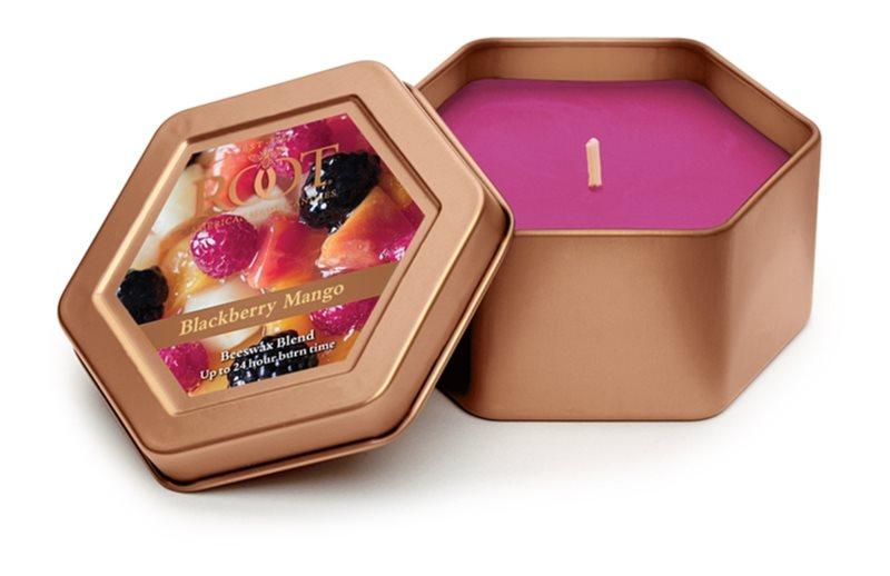 Root Candles Blackberry Mango świeczka zapachowa  113 g w puszcze