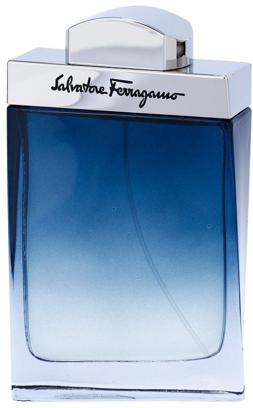 Salvatore Ferragamo Subtil Pour Homme тоалетна вода за мъже 100 мл.