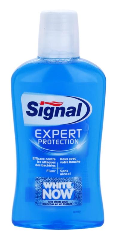 Signal White Now Expert Protection płyn do płukania jamy ustnej o działaniu wybielającym