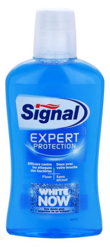 Signal White Now Expert Protection ústna voda s bieliacim účinkom