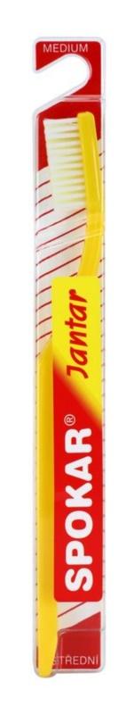 Spokar Jantar szczoteczka do zębów medium