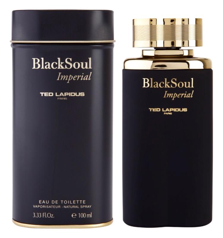 Ted Lapidus Black Soul Imperial Eau de Toilette für Herren 100 ml