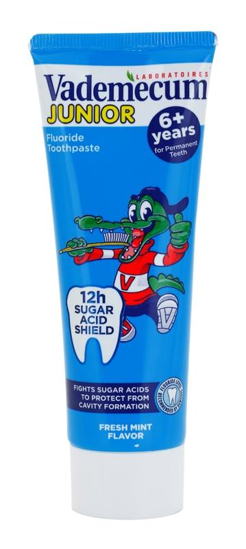 Vademecum Junior zubna pasta za djecu okusom metvice