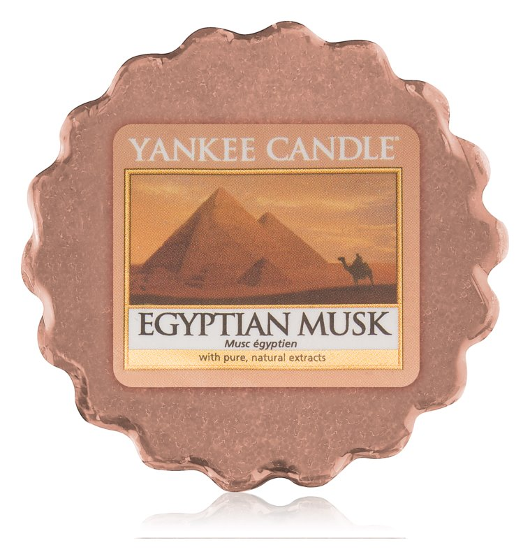 Yankee Candle Egyptian Musk Duftwachs für Aromalampe 22 g