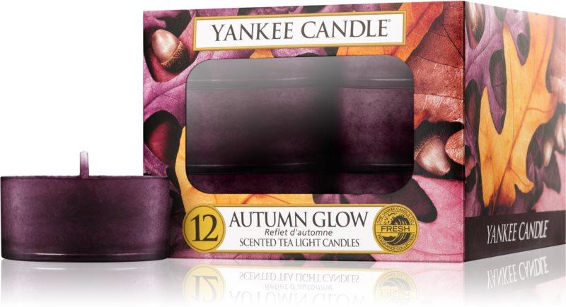 Yankee Candle Autumn Glow bougie chauffe-plat 12 x 9,8 g