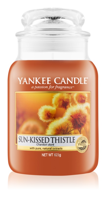 Yankee Candle Sun-Kissed Thistle lumânare parfumată  623 g Clasic mare