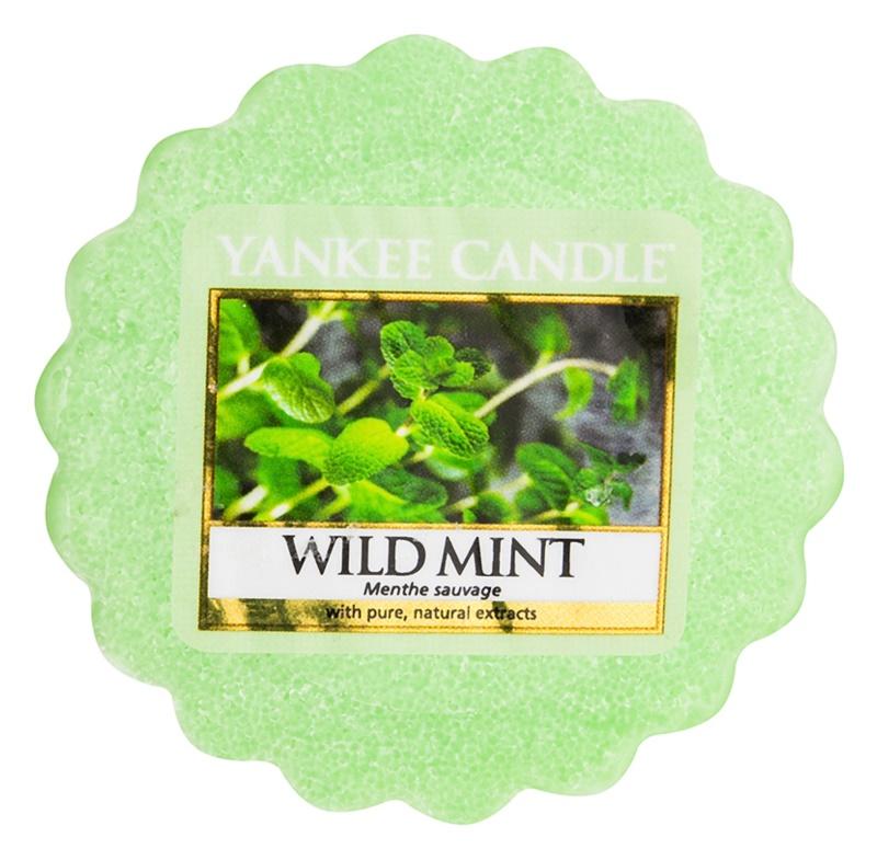 Yankee Candle Wild Mint illatos viasz aromalámpába 22 g