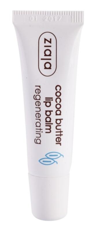 Ziaja Cocoa Butter balsam do ust z masłem kakaowym