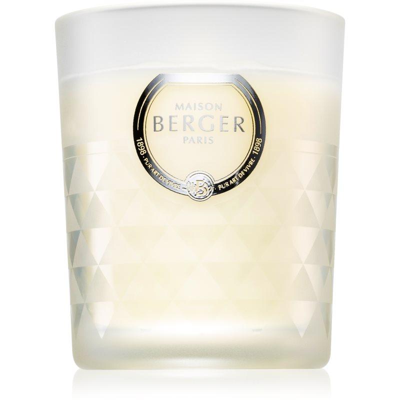 Maison Berger Paris Precious Jasmine illatos gyertya 170 g
