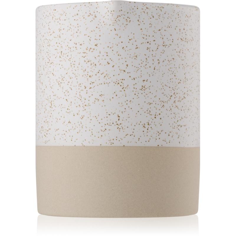 Paddywax Mesa Black Salt & Birch scented candle 283 g thumbnail