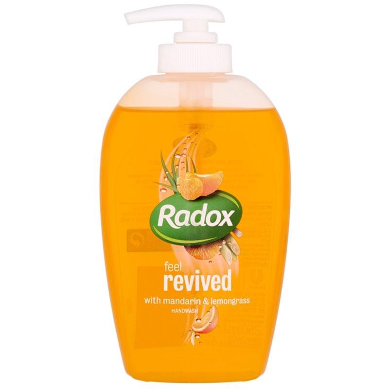Radox Feel Fresh Feel Revived savon liquide mains,RADOX,