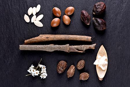 TOP Ingredience pro výživu a hydrataci pokožky
