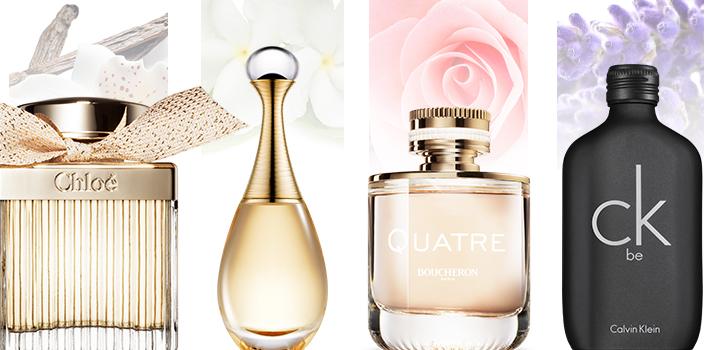 notas dos perfumes