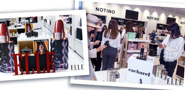 Elle Brunchul de la Notino, Cel mai mare Elle Brunch, Promenada Mall a găzduit evenimentul Elle Brunch