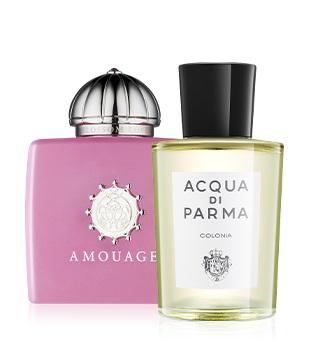 Meilleur parfum niche