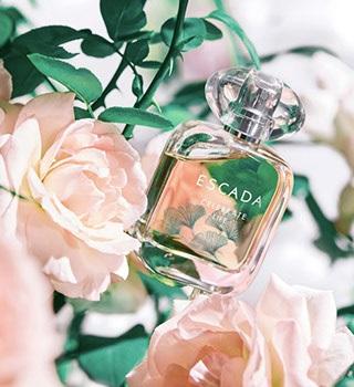 Parfum Celebrate Life de Escada