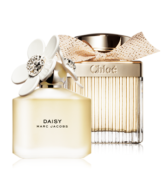 Best Womens Perfumes At Great Discounts Notinocouk
